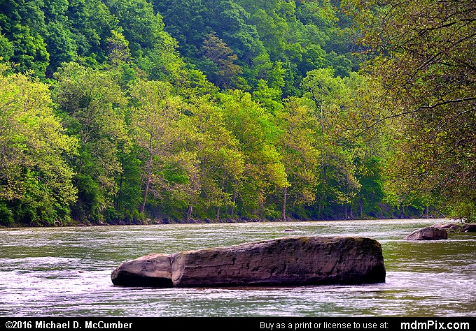 Youghiogheny River (Youghiogheny River Picture 005 - May 30, 2016 from Ohiopyle State Park, Pennsylvania)