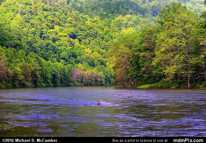 Youghiogheny Gorge (Youghiogheny Gorge Picture 006 - May 30, 2016 from Ohiopyle State Park, Pennsylvania)