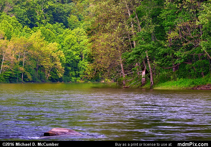 Youghiogheny River (Youghiogheny River Picture 008 - May 30, 2016 from Dunbar Township, Pennsylvania)