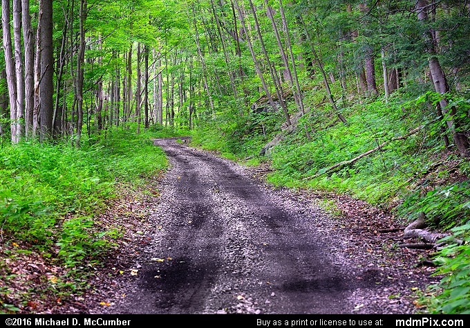 Indian Creek Valley Trail (Indian Creek Valley Trail Picture 019 - July 10, 2016 from Mill Run, Pennsylvania)