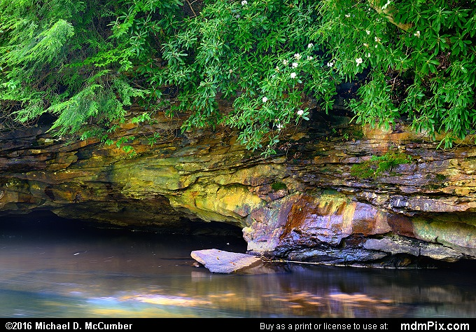 Indian Creek (Indian Creek Picture 024 - July 10, 2016 from Mill Run, Pennsylvania)