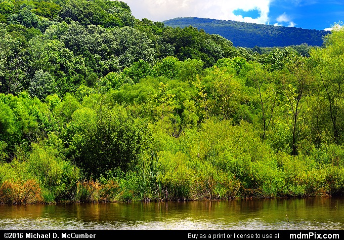 Mill Run Resevoir (Mill Run Resevoir Picture 025 - July 10, 2016 from Mill Run, Pennsylvania)
