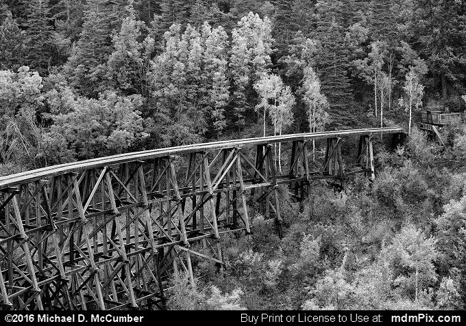 Mexican Canyon Railroad Trestle (Mexican Canyon Railroad Trestle Black and White Picture 004 - October 2, 2016 from Cloudcroft, New Mexico)