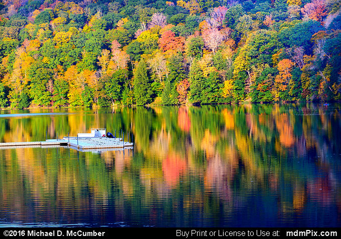 Laurel Hill Lake (Laurel Hill Lake Picture 031 - October 15, 2016 from Laurel Hill State Park, Pennsylvania)