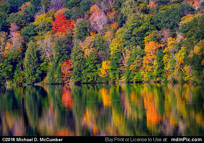 Laurel Hill Lake (Laurel Hill Lake Picture 037 - October 15, 2016 from Laurel Hill State Park, Pennsylvania)
