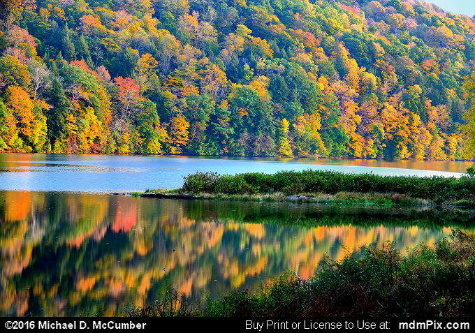 Laurel Hill Lake (Laurel Hill Lake Picture 056 - October 15, 2016 from Laurel Hill State Park, Pennsylvania)