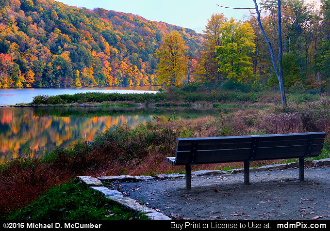 Park Bench (Park Bench Picture 057 - October 15, 2016 from Laurel Hill State Park, Pennsylvania)