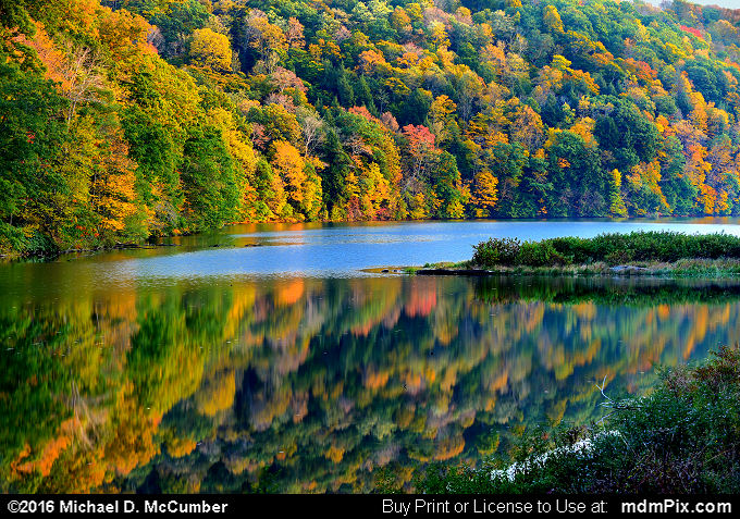 Laurel Hill Lake (Laurel Hill Lake Picture 059 - October 15, 2016 from Laurel Hill State Park, Pennsylvania)