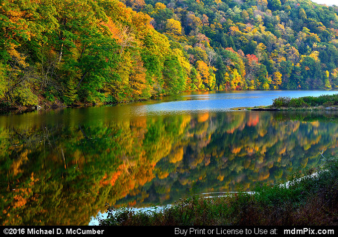 Water Reflection (Water Reflection Picture 060 - October 15, 2016 from Laurel Hill State Park, Pennsylvania)