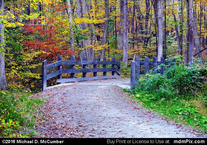 Rustic Bridge (Rustic Bridge Picture 066 - October 15, 2016 from Laurel Hill State Park, Pennsylvania)