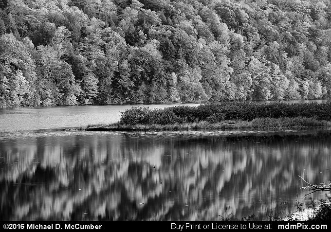 Laurel Hill Lake (Laurel Hill Lake Black and White Picture 069 - October 15, 2016 from Laurel Hill State Park, Pennsylvania)