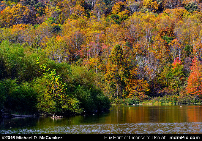 Mill Run Resevoir (Mill Run Resevoir Picture 010 - October 16, 2016 from Mill Run, Pennsylvania)