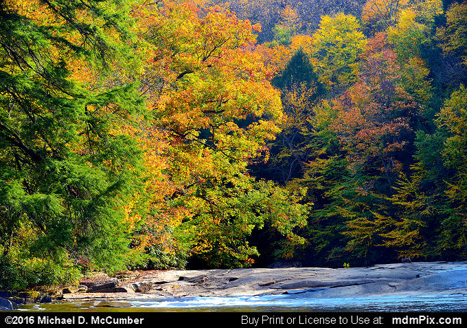 Indian Creek (Indian Creek Picture 015 - October 16, 2016 from Mill Run, Pennsylvania)