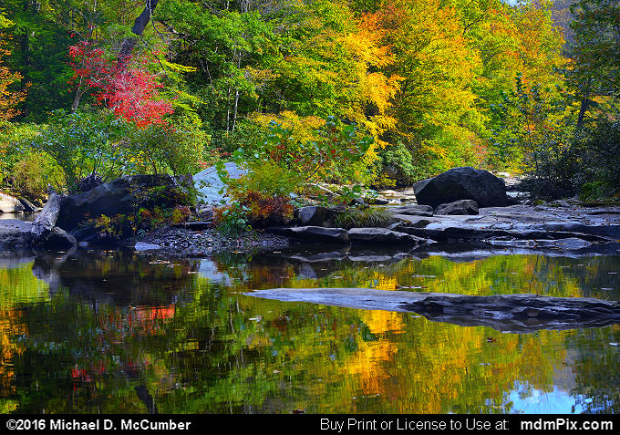 Water Reflection (Water Reflection Picture 026 - October 16, 2016 from Mill Run, Pennsylvania)