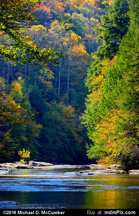 Indian Creek (Indian Creek Picture 029 - October 16, 2016 from Mill Run, Pennsylvania)