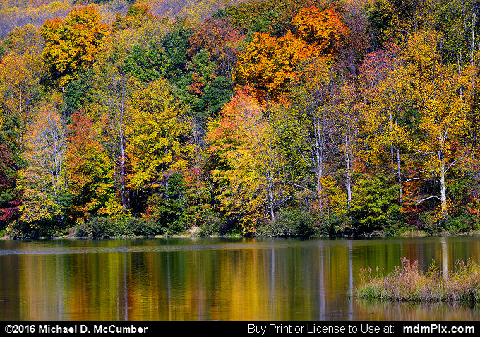 Mill Run Resevoir (Mill Run Resevoir Picture 050 - October 16, 2016 from Mill Run, Pennsylvania)