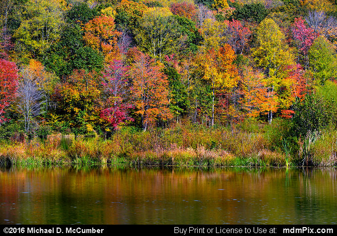 Mill Run Resevoir (Mill Run Resevoir Picture 054 - October 16, 2016 from Mill Run, Pennsylvania)