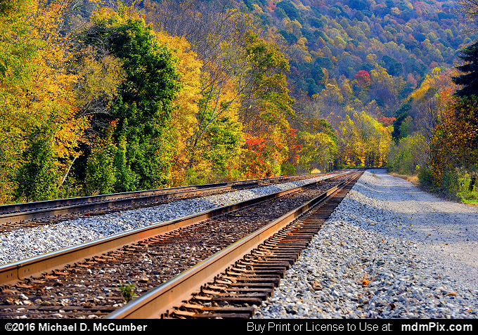 Railroad Tracks (Railroad Tracks Picture 004 - October 18, 2016 from Markleton, Pennsylvania)