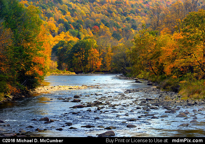 Casselman River (Casselman River Picture 005 - October 18, 2016 from Markleton, Pennsylvania)