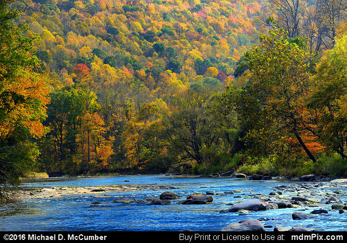 Casselman River (Casselman River Picture 006 - October 18, 2016 from Markleton, Pennsylvania)
