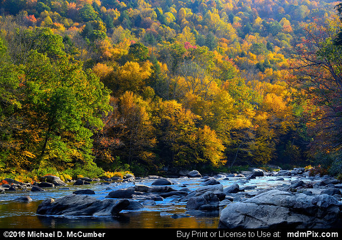 Casselman Gorge (Casselman Gorge Picture 015 - October 18, 2016 from Upper Turkeyfoot Township, Pennsylvania)