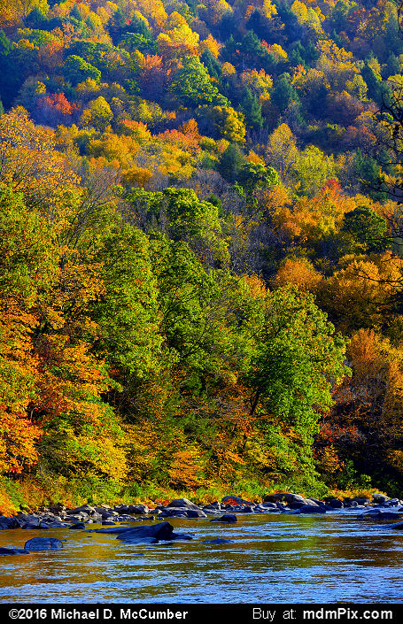 Casselman Gorge (Casselman Gorge Picture 021 - October 18, 2016 from Upper Turkeyfoot Township, Pennsylvania)