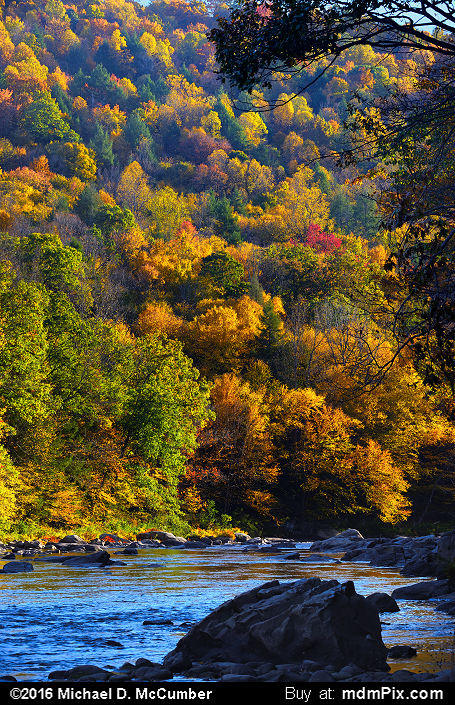 Casselman Gorge (Casselman Gorge Picture 024 - October 18, 2016 from Upper Turkeyfoot Township, Pennsylvania)