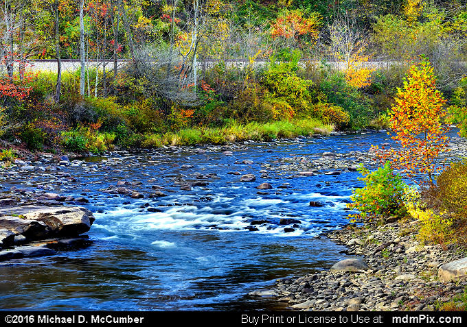 Casselman River (Casselman River Picture 027 - October 18, 2016 from Upper Turkeyfoot Township, Pennsylvania)