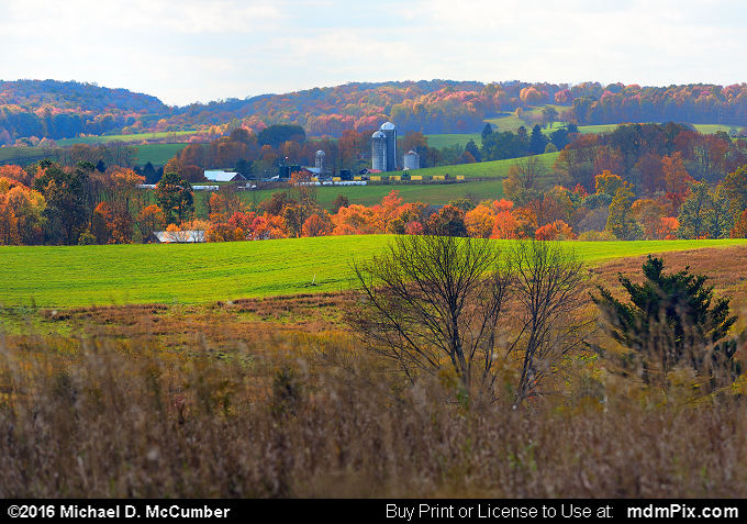 Farm Pasture (Farm Pasture Picture 037 - October 18, 2016 from Middlecreek Township, Pennsylvania)