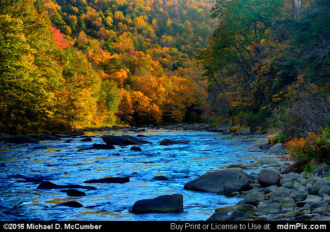 Casselman River (Casselman River Picture 058 - October 18, 2016 from Upper Turkeyfoot Township, Pennsylvania)