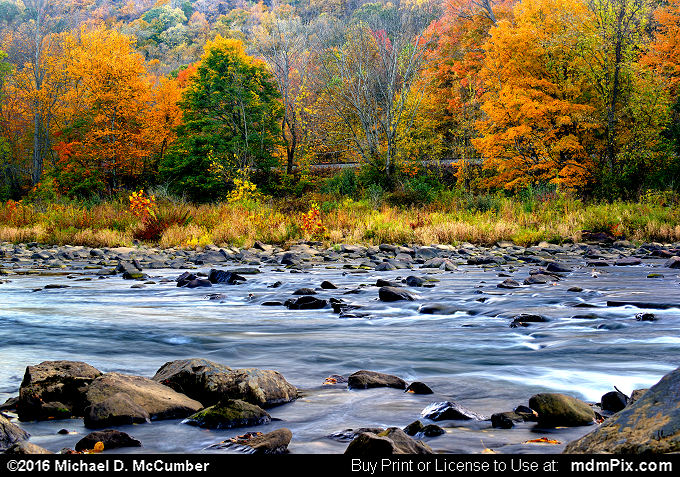 Casselman River (Casselman River Picture 066 - October 18, 2016 from Markleton, Pennsylvania)