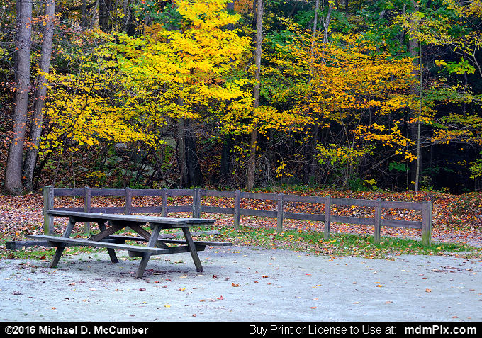 Picnic Table (Picnic Table Picture 068 - October 18, 2016 from Markleton, Pennsylvania)