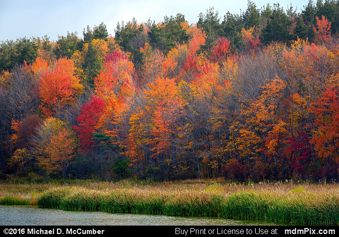 Somerset Lake (Somerset Lake Picture 004 - October 19, 2016 from Somerset, Pennsylvania)