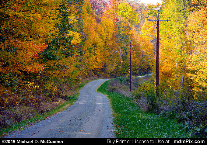 Dirt Road (Dirt Road Picture 089 - October 19, 2016 from Laurel Hill State Park, Pennsylvania)