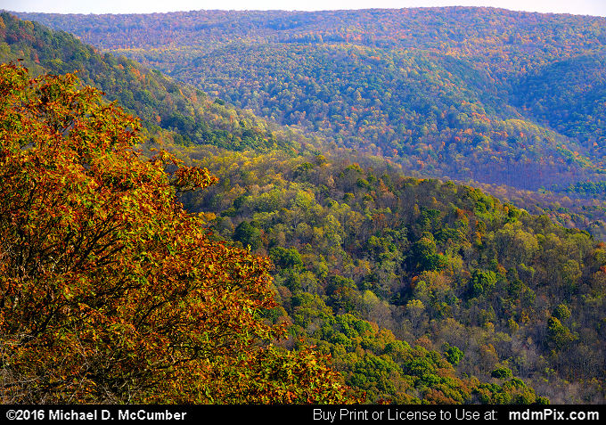Laurel Ridge (Laurel Ridge Picture 003 - October 29, 2016 from Ohiopyle State Park, Pennsylvania)