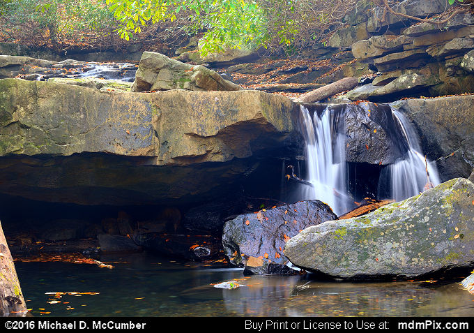 Cascading Waterfall (Cascading Waterfall Picture 019 - October 29, 2016 from Ohiopyle State Park, Pennsylvania)