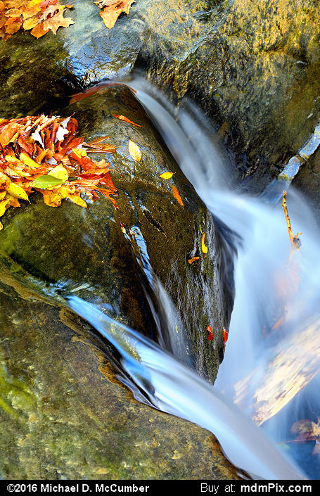 Cascading Waterfall (Cascading Waterfall Picture 039 - October 29, 2016 from Ohiopyle State Park, Pennsylvania)