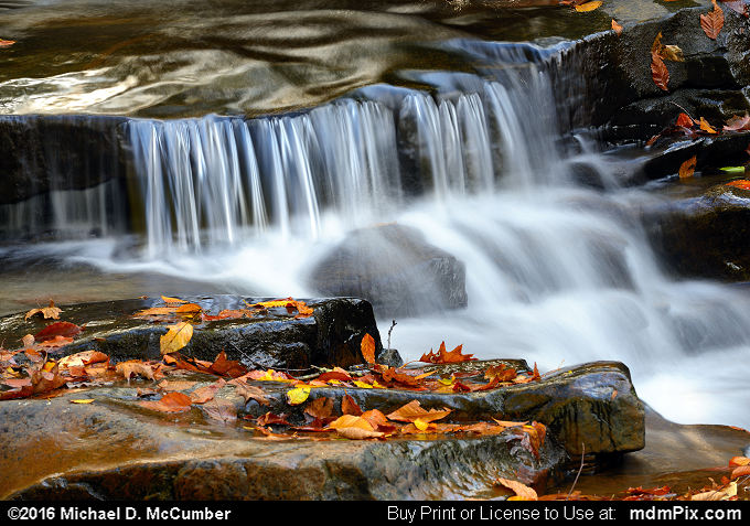 Cascading Waterfall (Cascading Waterfall Picture 040 - October 29, 2016 from Ohiopyle State Park, Pennsylvania)