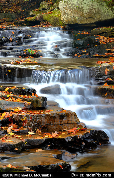 Cascading Waterfall (Cascading Waterfall Picture 042 - October 29, 2016 from Ohiopyle State Park, Pennsylvania)