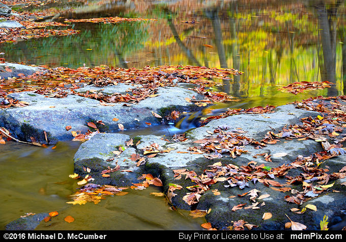 Water Reflection (Water Reflection Picture 063 - October 29, 2016 from Ohiopyle State Park, Pennsylvania)