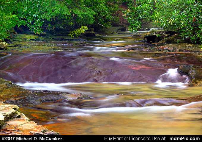 Linn Run (Linn Run Picture 008 - July 4, 2017 from Linn Run State Park, Pennsylvania)