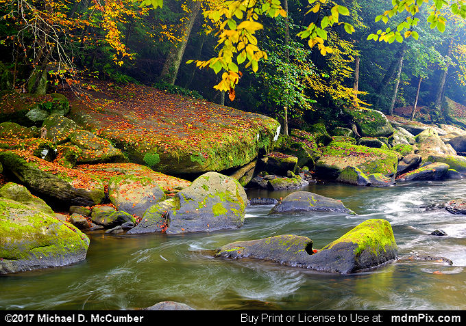 Slippery Rock Creek (Slippery Rock Creek Picture 027 - October 7, 2017 from McConnells Mill State Park, Pennsylvania)