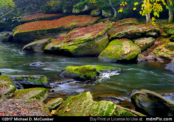 Slippery Rock Creek (Slippery Rock Creek Picture 032 - October 7, 2017 from McConnells Mill State Park, Pennsylvania)
