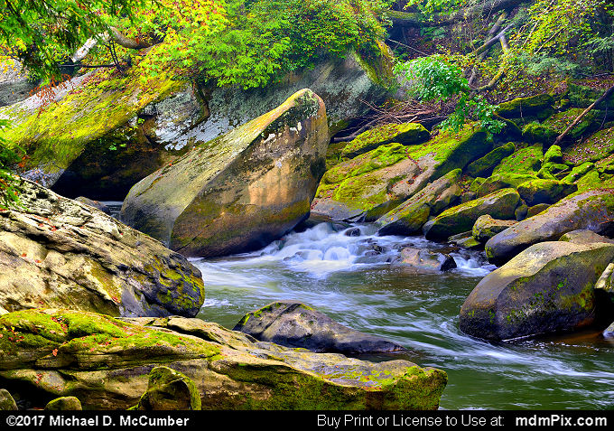 Slippery Rock Creek Boulders and Green Moss