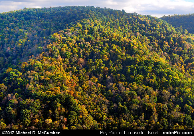 Chestnut Ridge (Chestnut Ridge Picture 012 - October 13, 2017 from PA State Game Land 51)