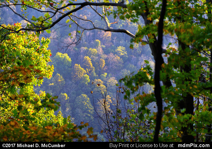 Youghiogheny Gorge (Youghiogheny Gorge Picture 020 - October 13, 2017 from PA State Game Land 51)