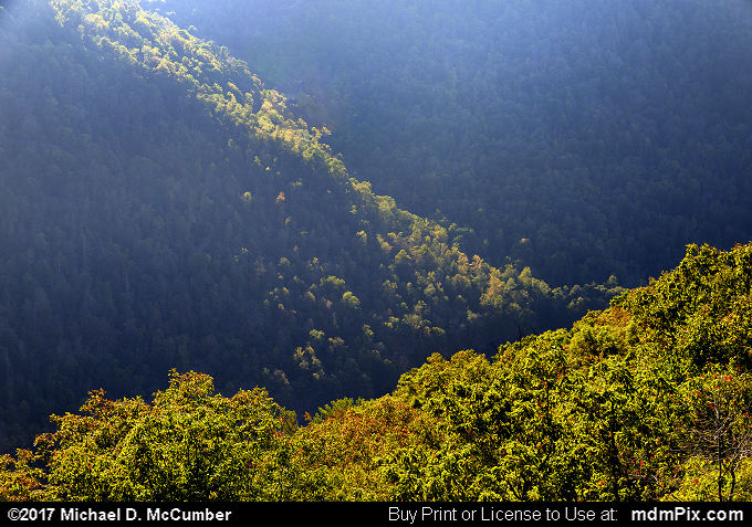 Chestnut Ridge (Chestnut Ridge Picture 049 - October 14, 2017 from Coopers Rock State Forest, West Virginia)