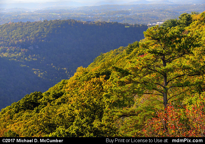 Chestnut Ridge (Chestnut Ridge Picture 052 - October 14, 2017 from Coopers Rock State Forest, West Virginia)