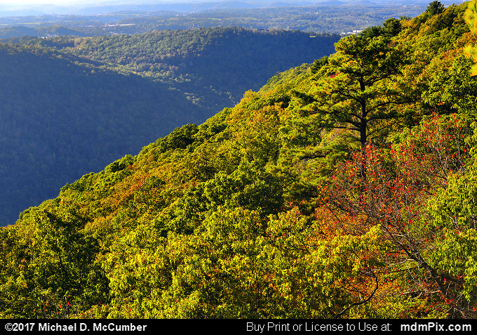 Coopers Rock Overlook (Coopers Rock Overlook Picture 056 - October 14, 2017 from Coopers Rock State Forest, West Virginia)