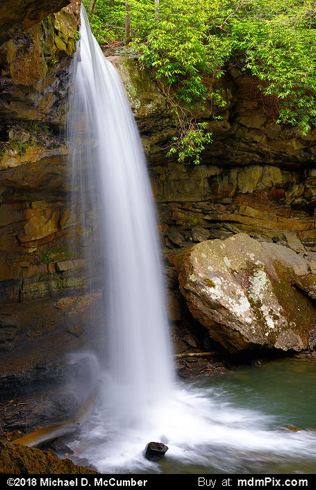 Cucumber Falls (Cucumber Falls Picture 012 - May 8, 2018 from Ohiopyle State Park, Pennsylvania)